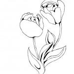 mamince  : dm11 kvetiny pro mamu 150x150 Den matek