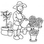 pěstitel