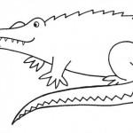 zvirata omalovanky  : zviratka krokodyl 150x150 Zvířátka A Ž
