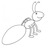 zvirata omalovanky  : zviratka mravenec 150x150 Zvířátka A Ž