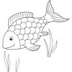 zvirata omalovanky  : zviratka ryba 150x150 Zvířátka A Ž