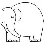 zvirata omalovanky  : zviratka slon 150x150 Zvířátka A Ž