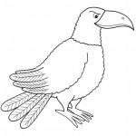 zvirata omalovanky  : zviratka vrana 150x150 Zvířátka A Ž