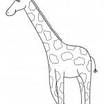 zvirata omalovanky  : zviratka zirafa 150x150 Zvířátka A Ž