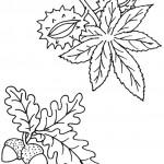 podzimni omalovanky  : podzimni listi 01 150x150 Podzimní listy