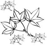 podzimni omalovanky  : podzimni listi 02 150x150 Podzimní listy