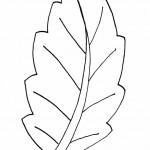 podzimni omalovanky  : podzimni listi 07 150x150 Podzimní listy