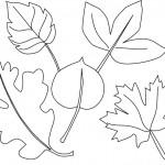 podzimni omalovanky  : podzimni listi 12 150x150 Podzimní listy