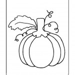 znaky-podzimu-3-dyne
