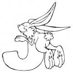 zvirata omalovanky abeceda omalovanky  : alphabet jack rabbit 150x150 Zvířecí abeceda (anglická)