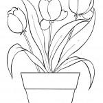 rostliny kvetiny kvetinky jarni tvoreni jarni omalovanky  : jarni tulipany 150x150 Jarní květinové tvoření