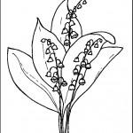 kvetiny na jare kvetinky jarni omalovanky  : 08 kovalinka 150x150 Jarní kytičky