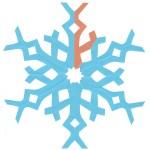 snehova vlocka 13