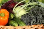 pece o deti  : jidlo Jak motivovat děti s cystickou fibrózou k jídlu?