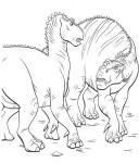 dinosauri-35